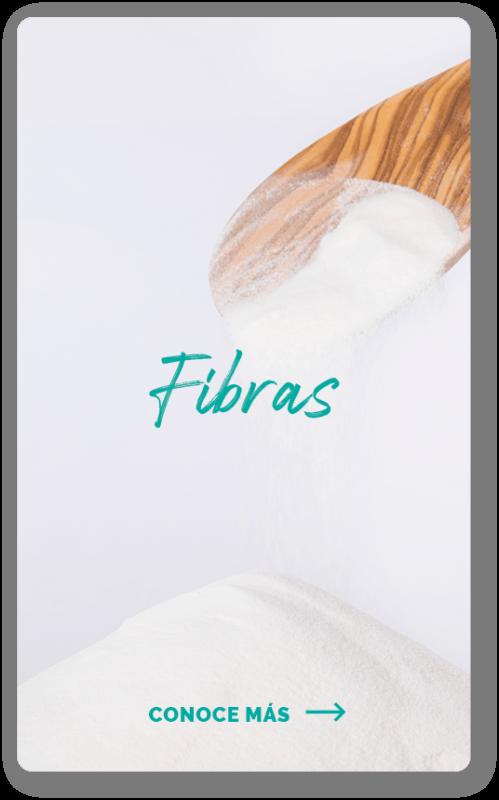 Presentación Fibras