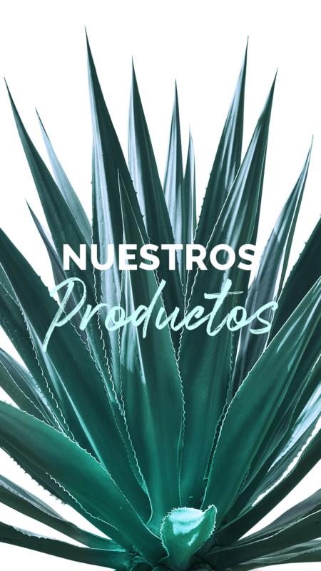Banner Nuestros Productos